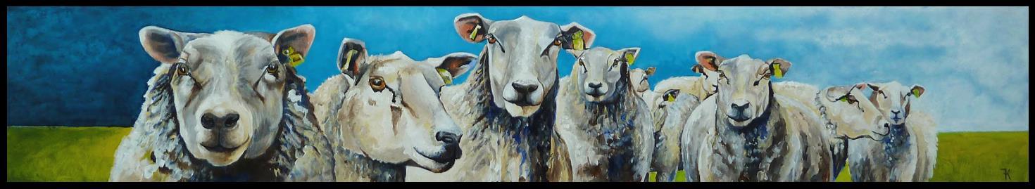 schapenrij